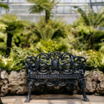 Anna Scrips Whitcomb Conservatory