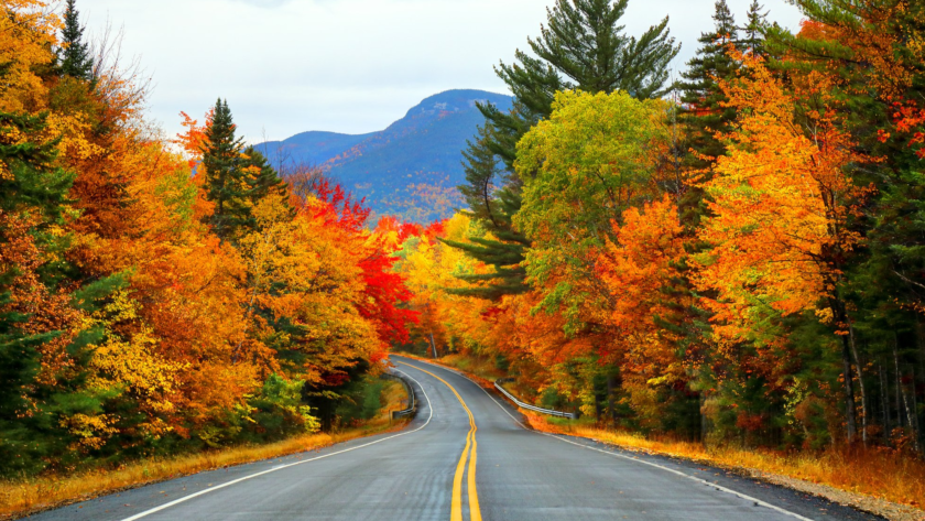 A Patriotic Drive; Visiting New England in the Fall