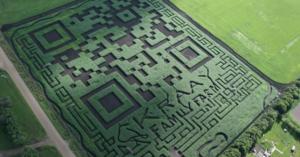 kraay-family-farm-home-of-the-lacombe-corn-maze-inc-L-12