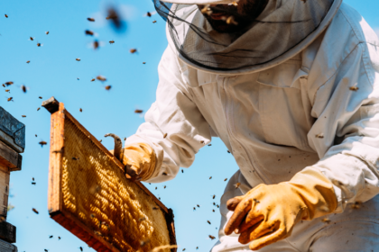 5 Things Beekeeping Does For You!